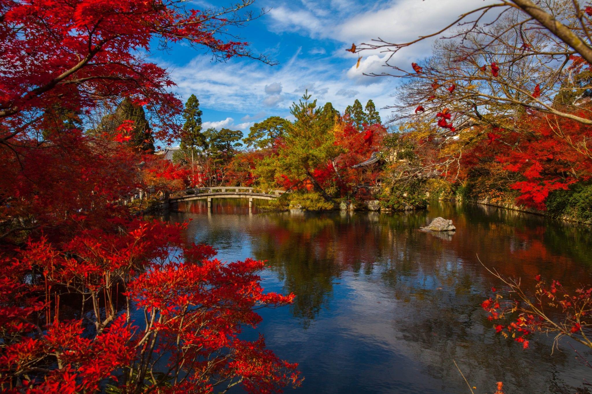 Paysage d'un lac au Japon - Mariage Perpignan - Voyage Perpignan